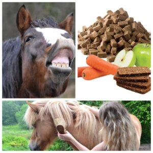 Godbidder heste