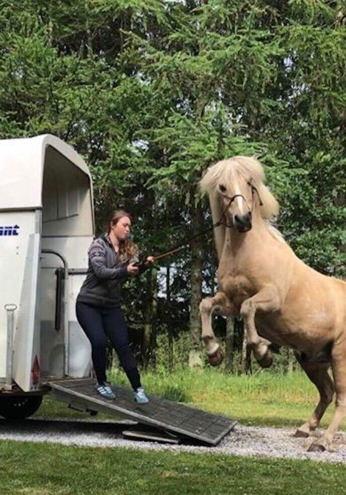 trailerlæsning