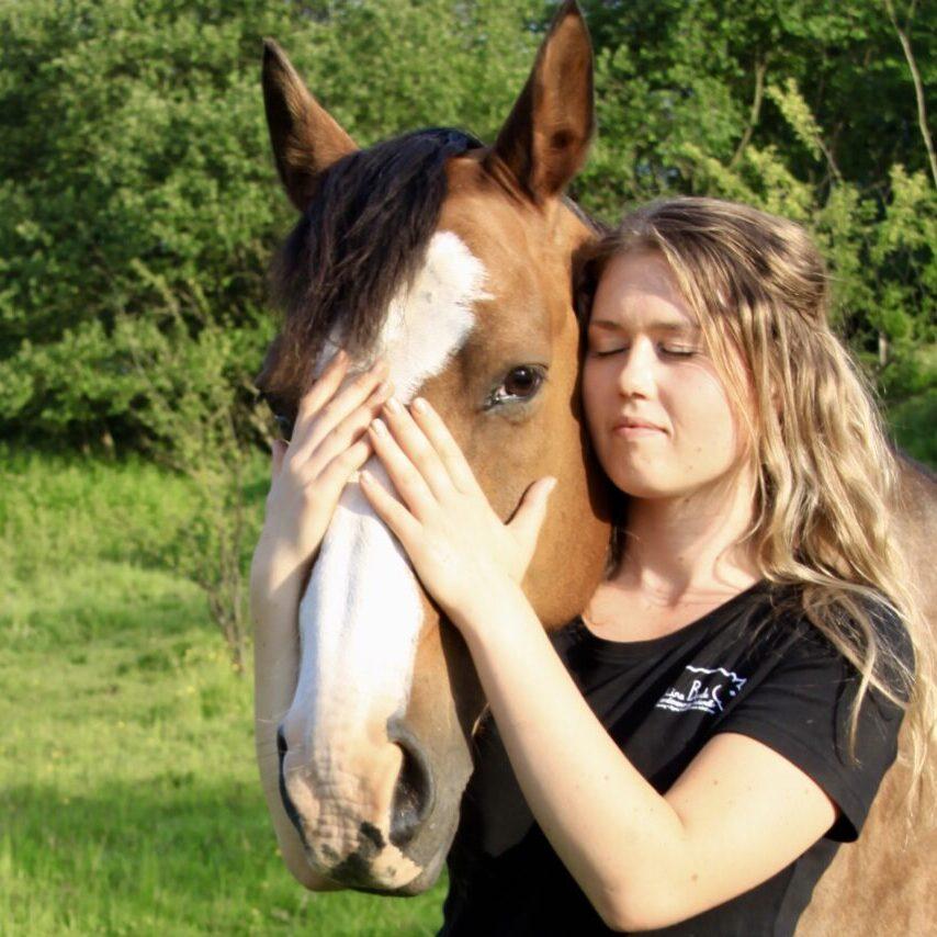 heste - lille